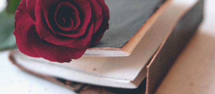 Blog über die Liebe und das Leben