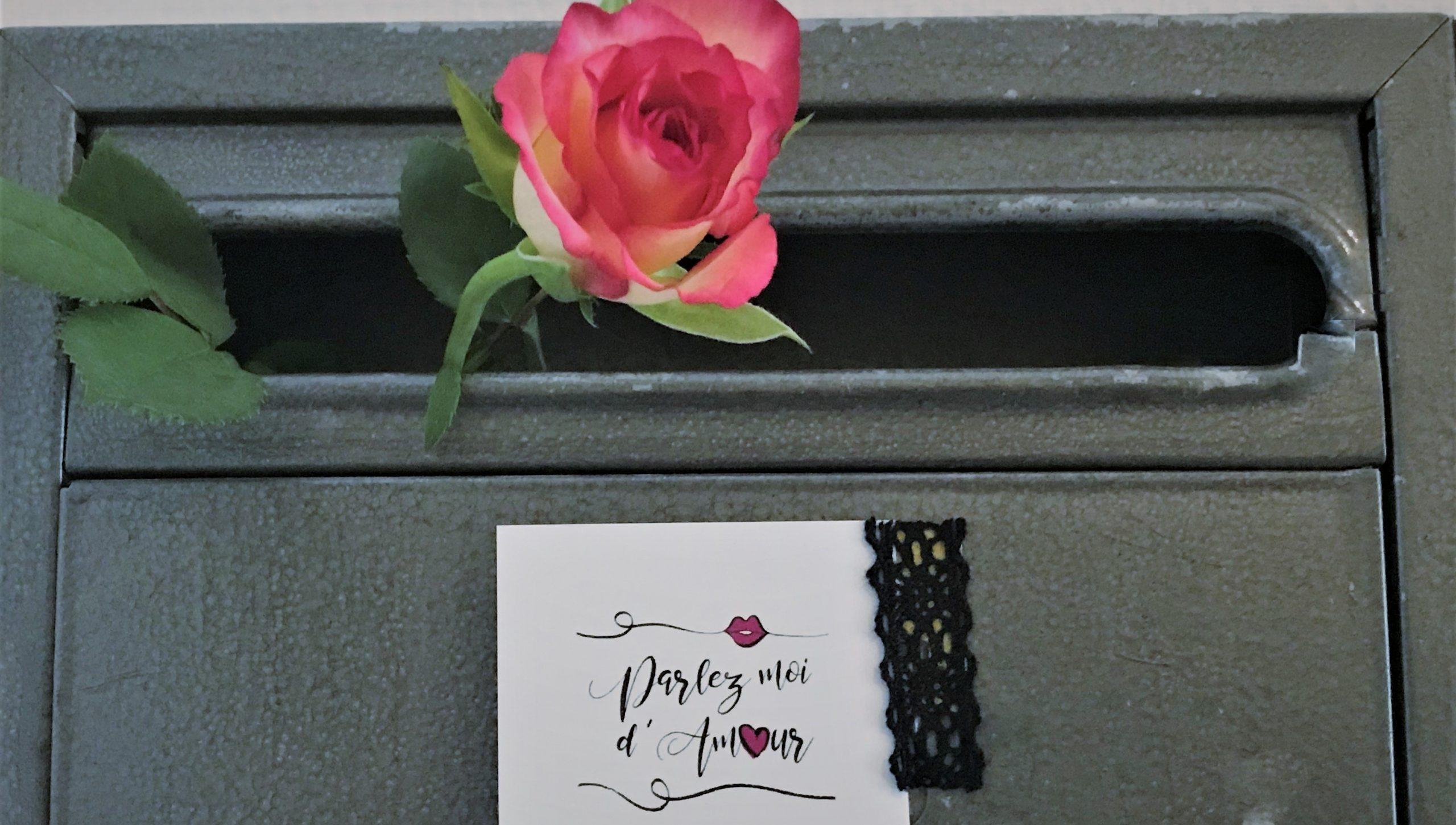 Rose im Briefkasten